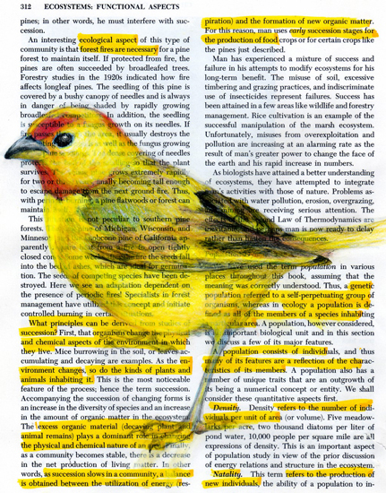 pswisher_yellow_highlight_finch